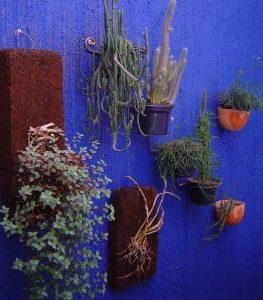 Dicas para decoração da área externa - Jardim Vertical
