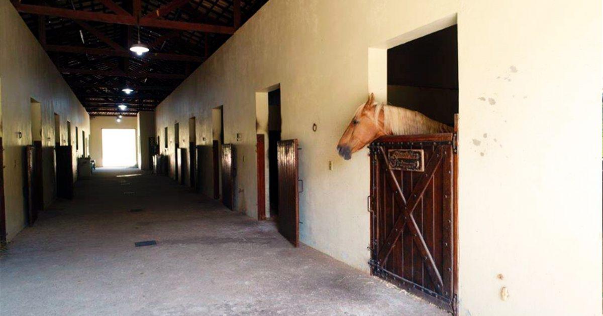 Fotos do Condomínio Fazenda Kurumin em Itu/SP
